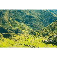 7 Dagen Noord Luzon & Banaue Rijstterrassen