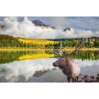 15 Daagse West Canada Rondreis Vancouver & Canadian Rockies