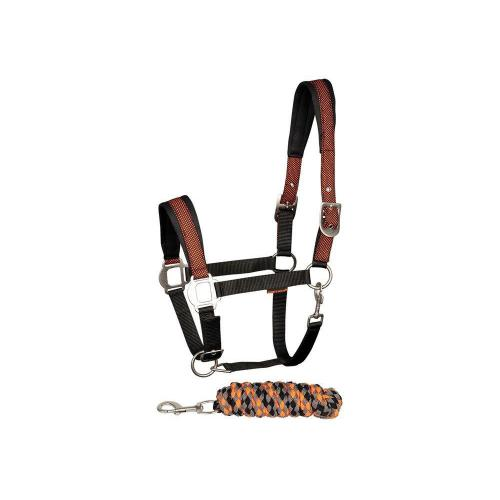 Halsterset Equestrian Society Orange, black