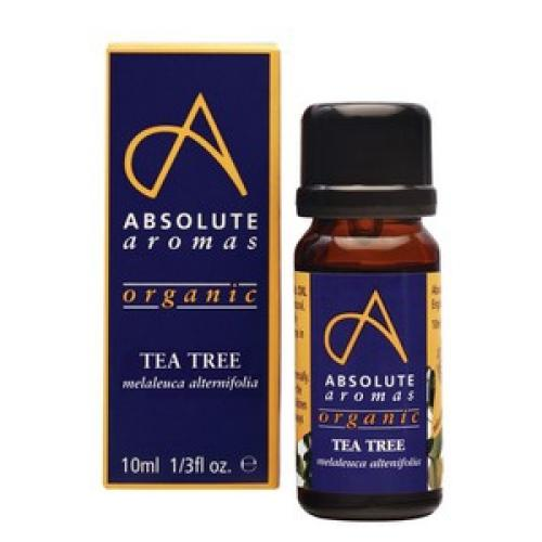 Organic Tea Tree 10ml - Absolute Aromas