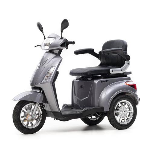 Nipponia Scooty